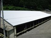 施工実績012 牛も元気に牛舎の暑さ対策(宇陀牧場様)|奈良県