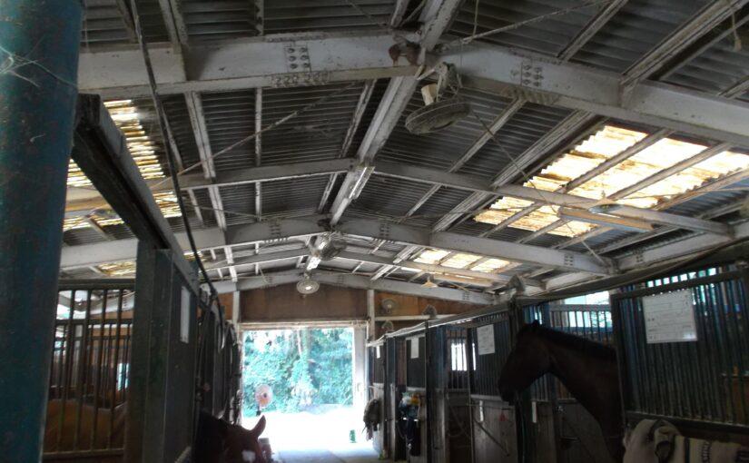 厩舎の暑さ対策のご相談いただきました。家畜も人も暑さ対策の方法は同じです
