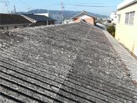 既存スレート屋根の写真です