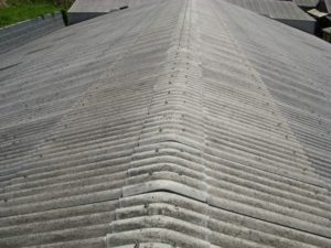 スレートの牛舎屋根
